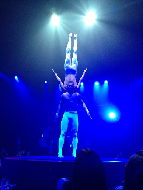 "From the Vegas show ""Absinth"""