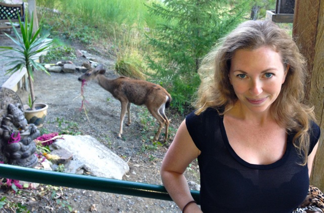 Just outside of the hippie resort where tame deer are well-fed.